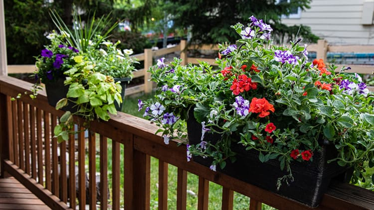 how to build a flower box on a deck