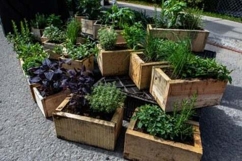 how to build a planter box for herbs