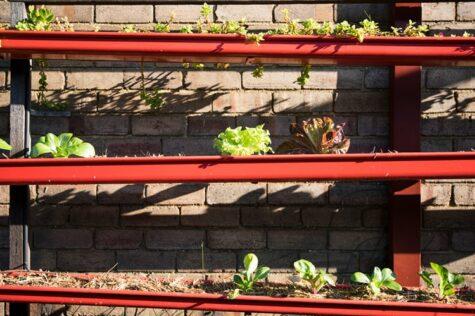 make a gutter planter box