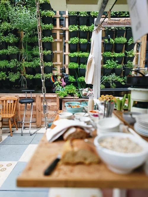 planted herb shelves