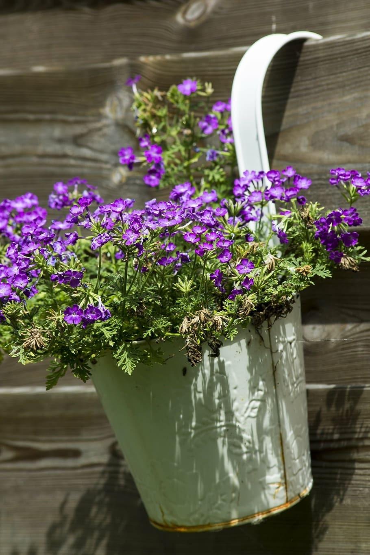 planter buckets