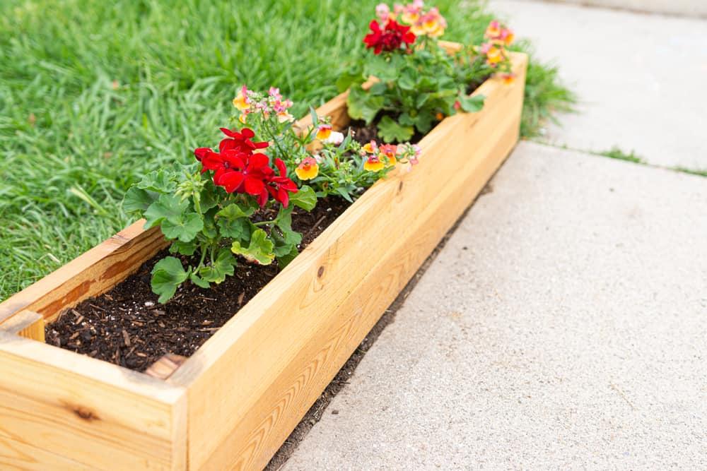 rectangular cedar planter box
