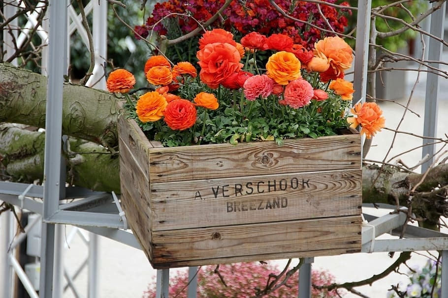 recycled flower box