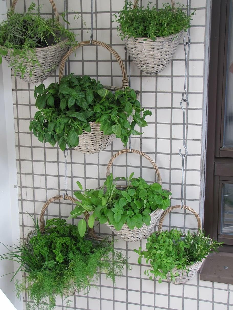 repurposed baskets
