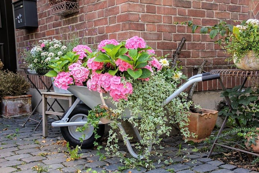 repurposed wheelbarrow