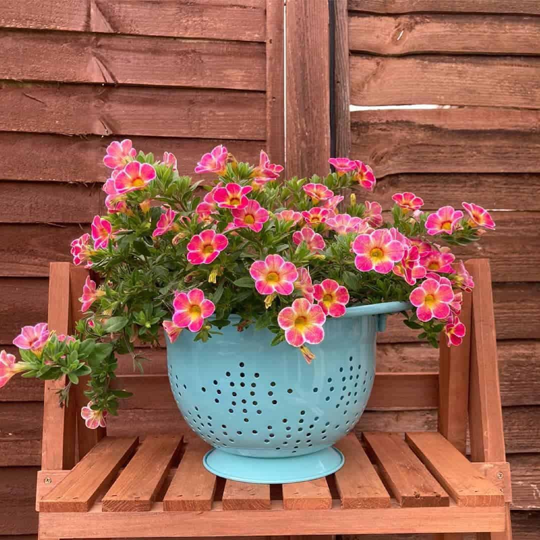 small planter box