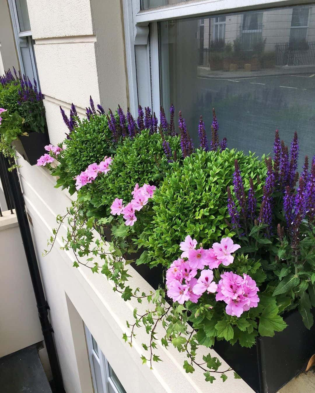 structured flower box