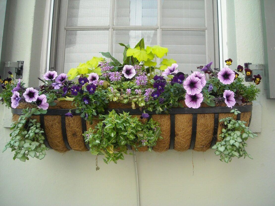 wall mounted flower baskets