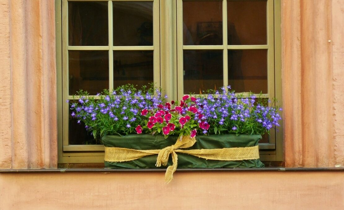 window sill flower boxes