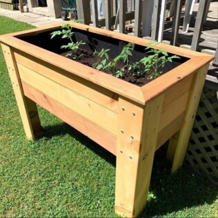 What Is the Best Wood for a Planter Box? 1