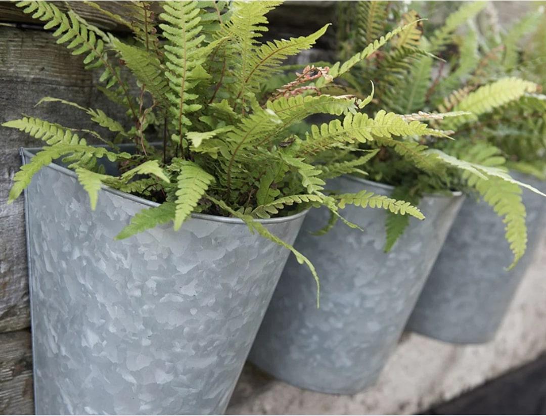 Galvanised steel wall planters
