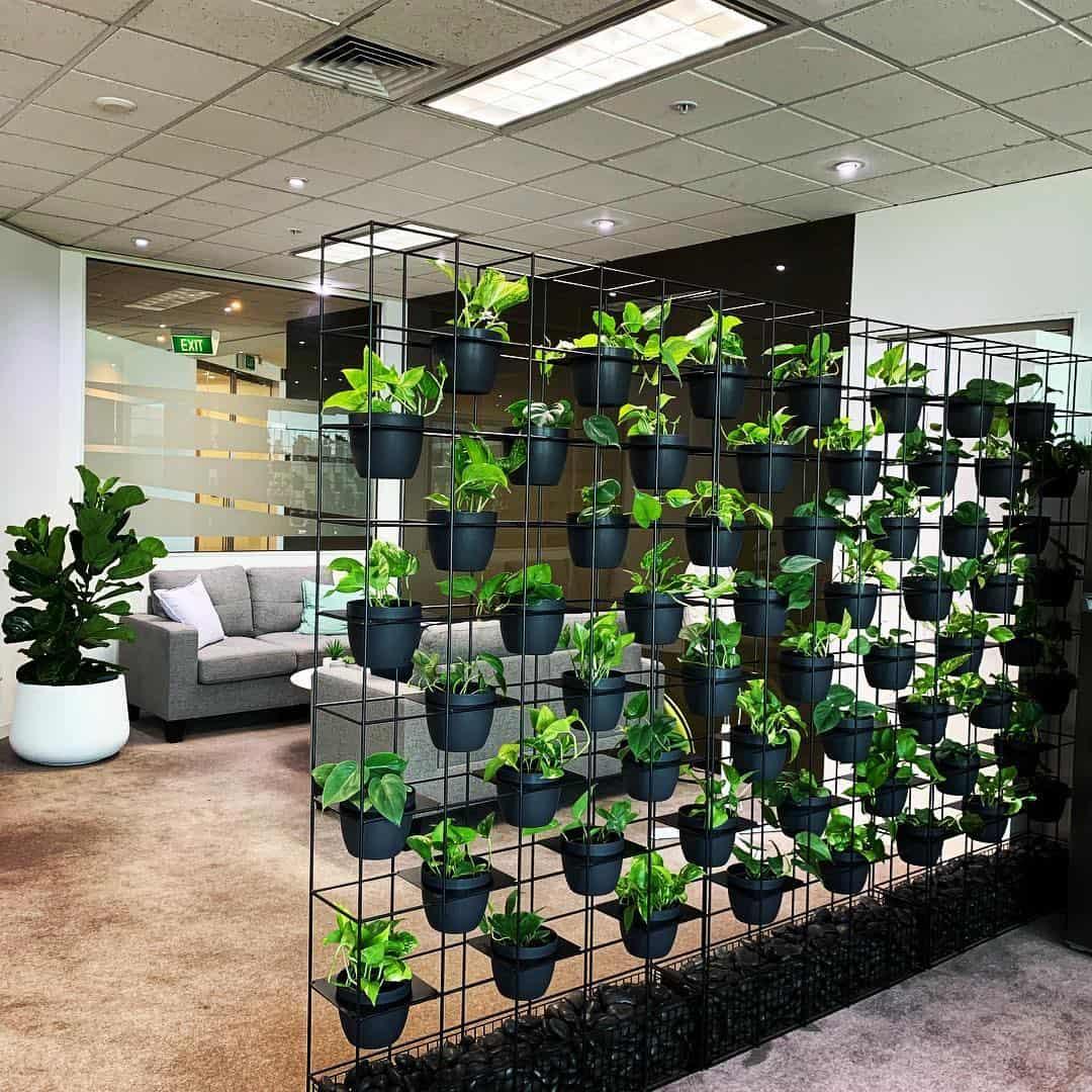 Indoor planter wall