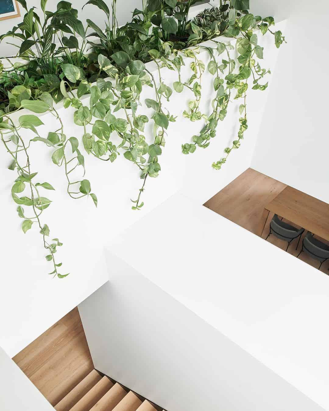 Stairwell planter box