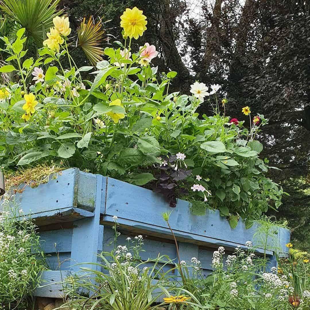 Trough pallet planter