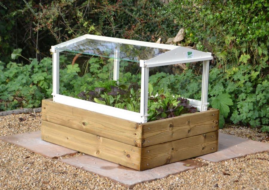 cloche herb planter box