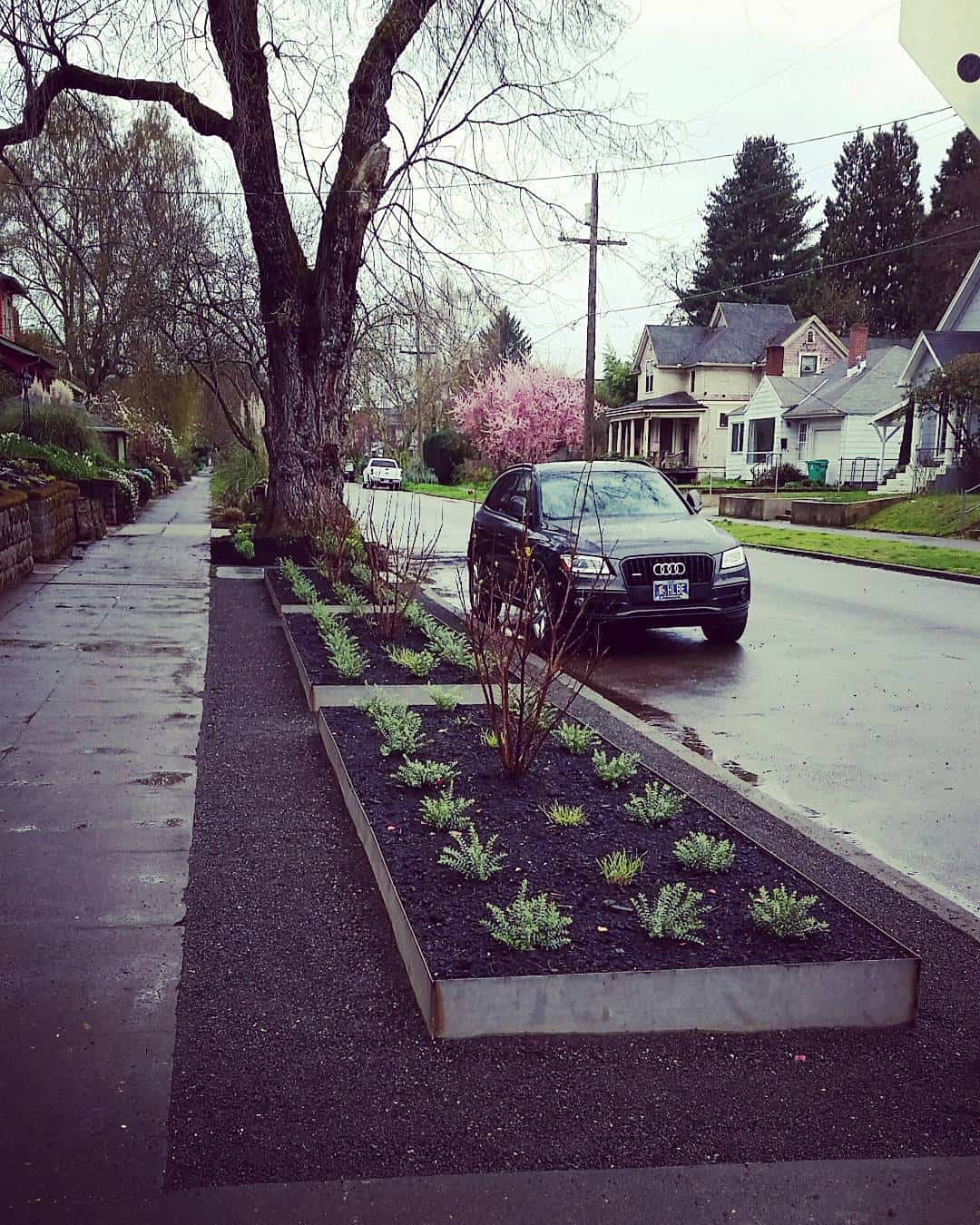 galvanised raised bed planter