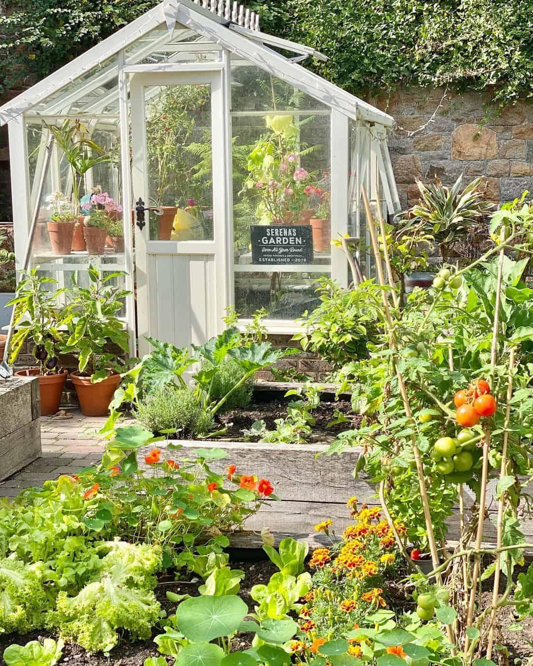 planter box for vegetables