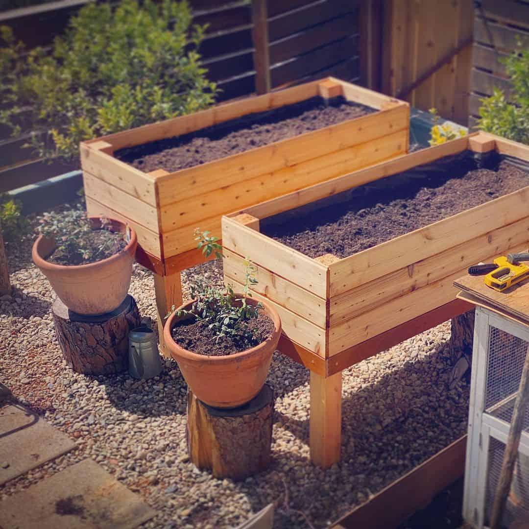 raised planter box for vegetables