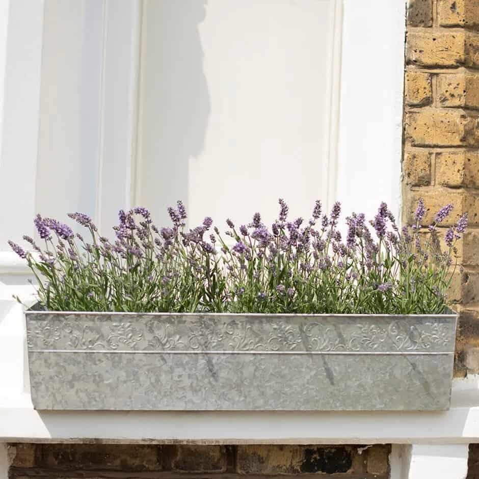 windowsill galvanized planter box